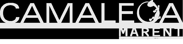 Camaleoa | Acessórios Incríveis